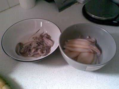 squid - gutted